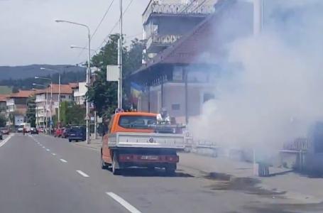 La Piatra Neamț se deratizează tot: insecte, oameni şi maşini… (video)