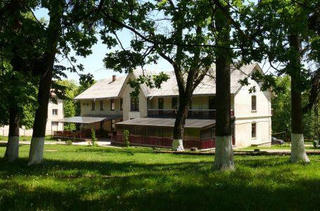 DJTS organizează tabere internaţionale la Oglinzi