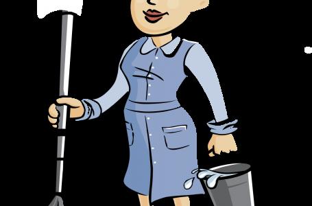 ADR Nord-Est angajează femeie de serviciu cu experiență, recomandări și diplomă de bacalaureat! Examenul constă în probă practică!
