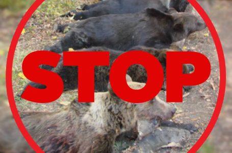 Liviu Harbuz: Spune NU masacrului animalelor protejate de lege! Semnează petiția!