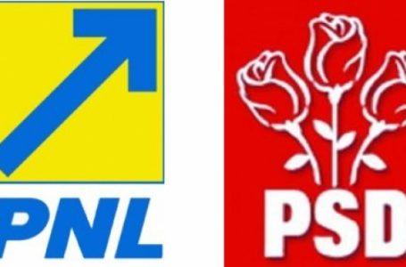 În Neamț, lupta la parlamentare se dă în 2! Câte mandate va câștiga fiecare?!