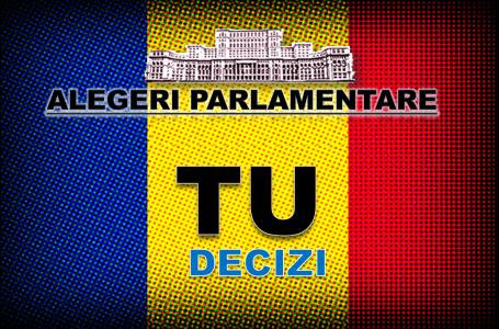 Cine câștigă alegerile parlamentare? Cine dă mai mult! Ce surprize vor fi în Neamț!?