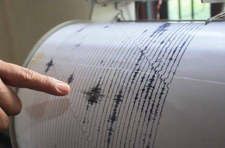 Un cutremur important s-a produs marți în România