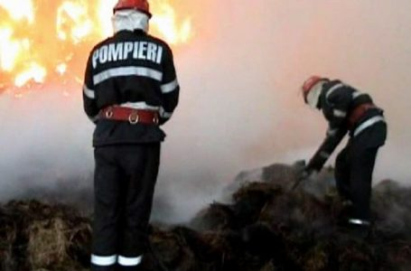 Zece hectare pârjolite de foc la Izvorul Muntelui din cauza unui inconștient