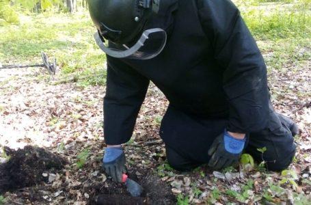 Sute de bombe și cartușe au fost găsite de pirotehniștii ISU într-o pădure din Neamț