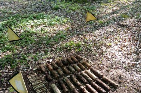 Zeci de proiectile, găsite într-o pădure din Neamț