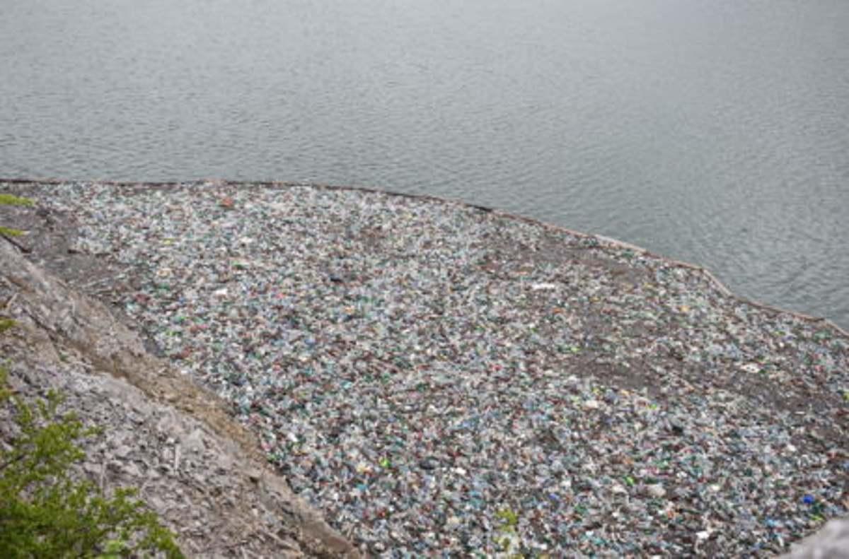 Mii de pet-uri au apărut iar pe lacul Izvorul Muntelui Bicaz (foto)