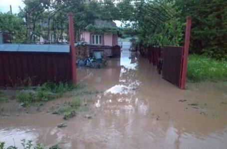 Cod Portocaliu de furtuni în Neamț