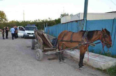 Patru persoane, căzute cu căruța într-o râpă în Neamț