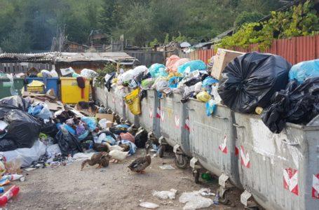 """Orașul """"turistic"""" Bicaz, îngropat de gunoaie! Vede cineva de la DSP sau Garda de Mediu?"""