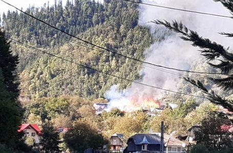 Incendiu de proporții la Gârcina! Cel puțin 5 gospodării sunt afectate de flăcări!