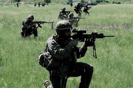 """Infanteriştii din Piatra Neamţ participă la exerciţiul """"Rapid Trident 19"""" din Ucraina"""
