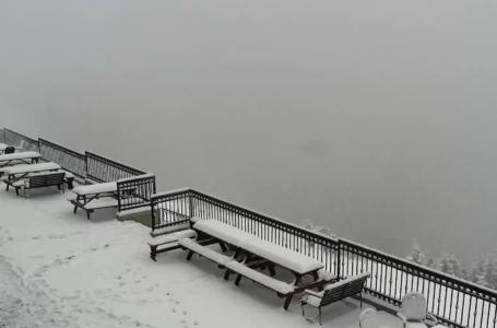Imagini LIVE spectaculoase cu ninsoarea din masivul Ceahlău