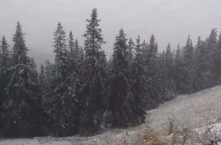 Imagini live cu prima zăpadă din județul Neamț