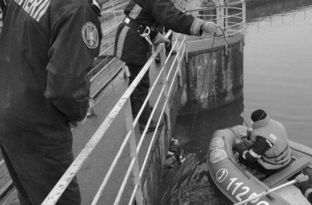 Șase porci morți pluteau pe râul Bistrița, la Săvinești
