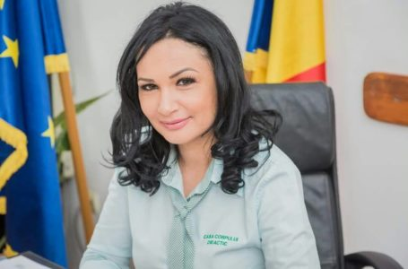 "Florentina Moise (director Casa Corpului Didactic Neamț): ""Școala on-line e o provocare"""