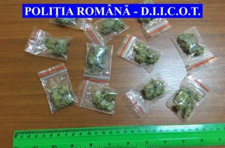 Arest la domiciliu pentru cei 2 traficanți de cannabis din Piatra-Neamț
