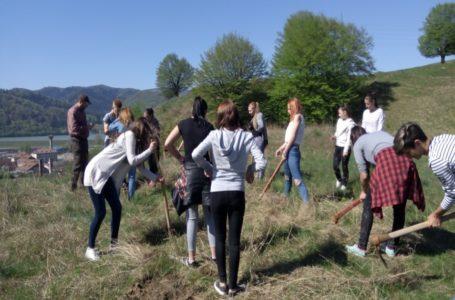 """""""Pădurea – sursă de oxigen"""" – Activitate de planatare a elevilor Colegiului Tehnic Forestier Piatra-Neamț"""