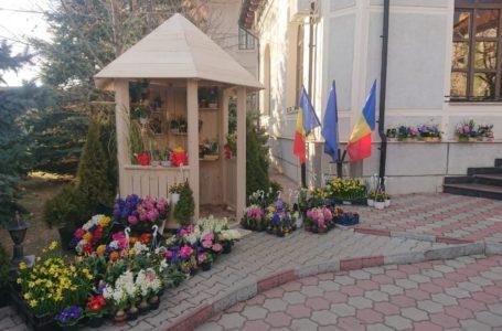Grădina Minunată de la Direcția Silvică Neamț