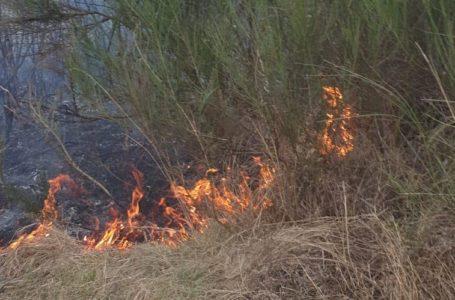 Nu e o glumă! Pe 1 aprilie, pompierii nemțeni au intervenit la 5 incendii de vegetație uscată!
