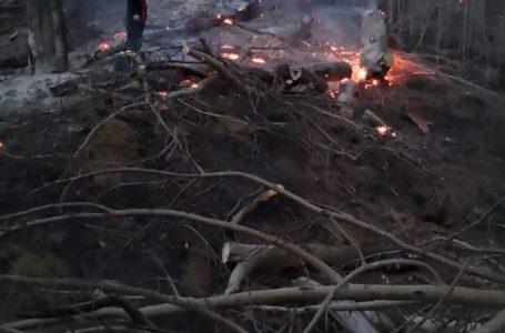 Trei hectare de vegetație din Pipirig, pârjolite de un incendiu