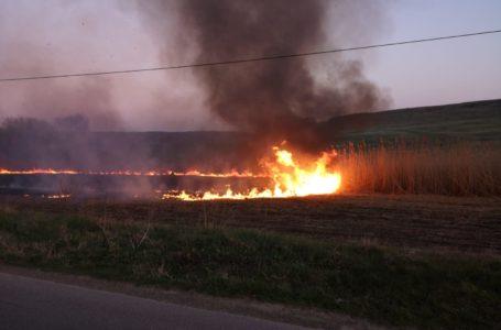 Un incendiu pus intenționat a pârjolit 24 de hectare de pășune și pădure din Poiana Teiului