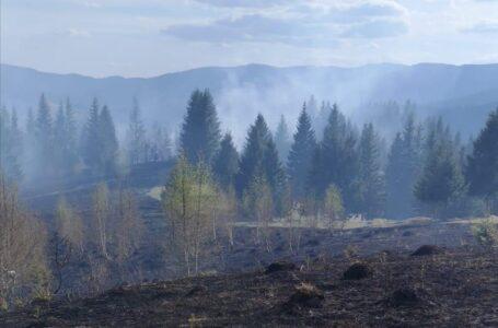 Pârjol la Borca! Incendiu pe 50 de hectare de vegetație și pădure! Pompierii intervin de 24  ore!