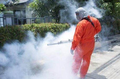 Salubritas anunţă dezinfecţie, dezinsecţie şi deratizare în Piatra-Neamţ