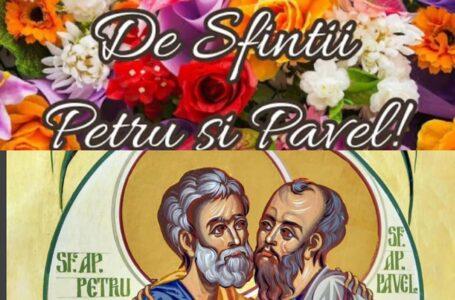 Mesajul senatorului PSD Emilia ARCAN cu prilejul Sfinților Petru și Pavel