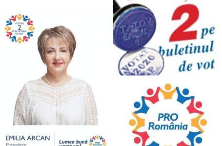 """Emilia Arcan, singura femeie în """"arena cu lei"""" pentru Consiliul Județean Neamț"""