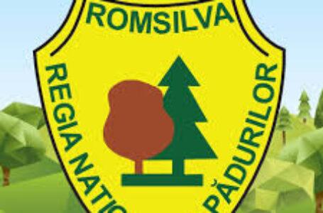 Direcția Silvică Neamț – Anunț privind organizarea licitației intermediare pentru vânzare masă lemnoasă pe picior