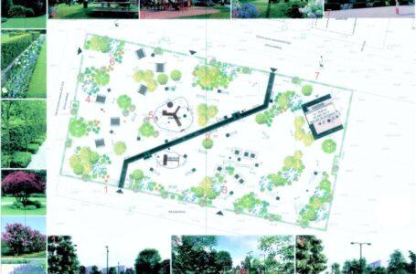 """Dragoș Chitic: """"Vom crește calitatea vieții pietrenilor prin realizarea unor grădini publice urbane în cartierele Dărmănești, Speranța și Văleni"""""""