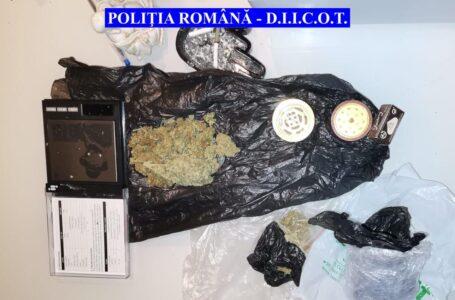 Nouă descinderi în Piatra-Neamț la traficanți de droguri (foto-video)