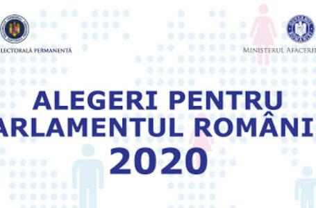 Iată ordinea pe buletinele de vot pentru parlamentarele din Neamț