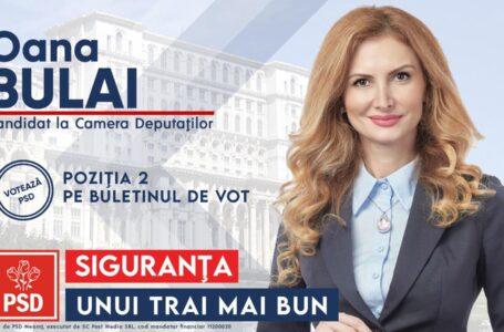 """Oana Bulai (PSD): Pasarela din Roman, de la trecerea la nivel cu calea ferată spre Iași, a rămas """"în aer"""""""