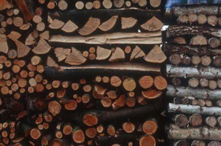 Doi bărbați, prinși sub o stivă de lemne în curtea unei fabrici din Neamț