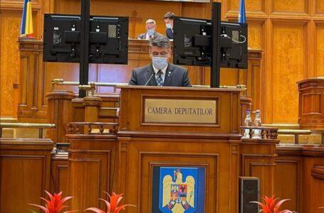 Laurențiu Leoreanu (PNL) – reconfirmat vicepreședinte al Camerei Deputaților