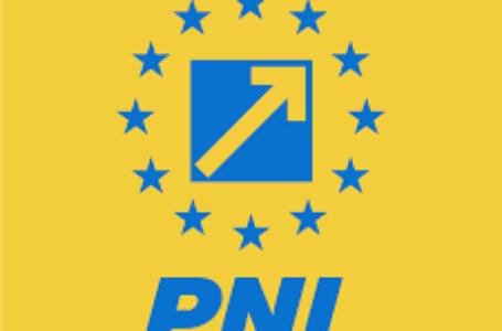 """PNL Neamţ: """"Dacă ar avea onoare, Ionel Arsene ar trebui să demisioneze!"""""""
