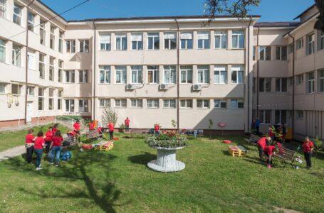 Curtea Spitalului Județean Neamț, mai frumoasă ca niciodată