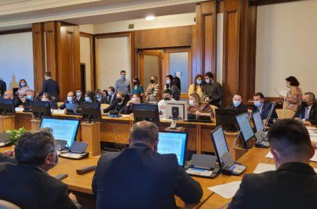 Deputatul Mara Calista (PNL Neamţ): Legea consumatorului vulnerabil de energie a fost adoptată!