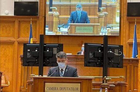 Deputatul Laurenţiu Leoreanu doreşte amnistierea diurnelor transportatorilor şi muncitorilor detaşaţi în străinătate
